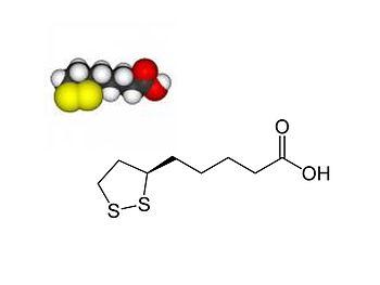Alpha Lipoic Acid.