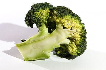 Brocolli, Unknown Cultivar
