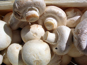 White mushrooms ready for cooking. While commo...