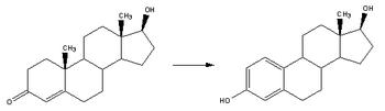 Aromatase converts testosterone to estradiol