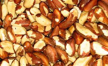 Brazil nuts come from a South American tree