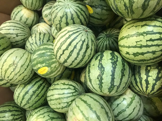 organic mini seedless watermelons